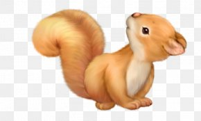 Squirrel Angel Cliparts - Squirrel Cartoon Cuteness Clip Art PNG