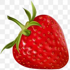 Strawberry - Strawberry Shortcake Clip Art PNG