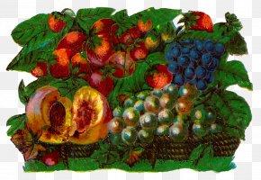 Fruits Basket - Fruit Digital Art Watercolor Painting Food Gift Baskets Clip Art PNG