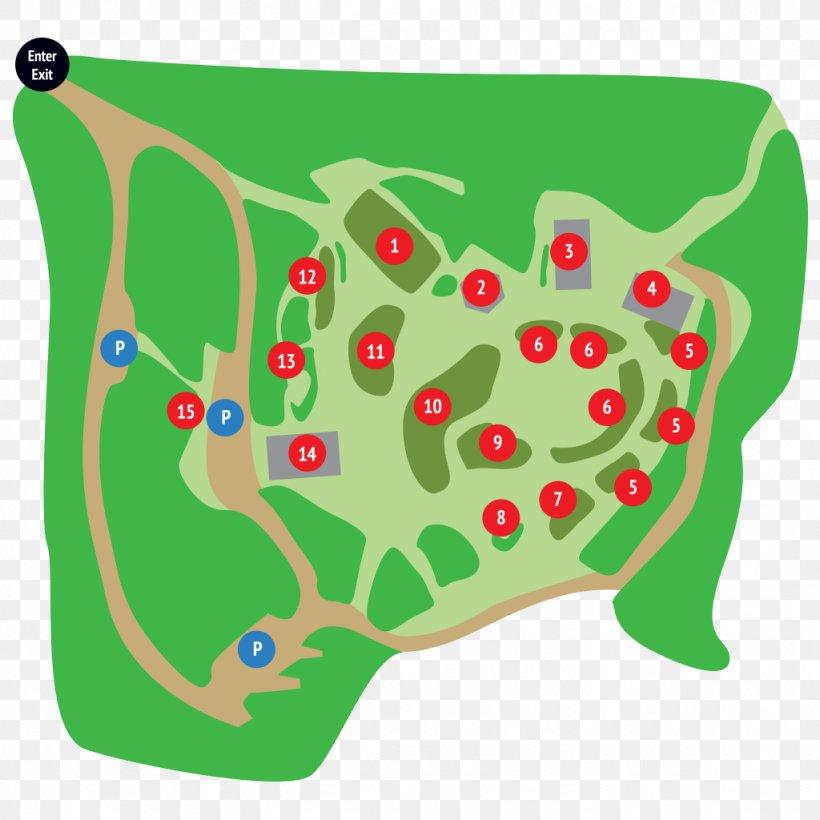 Amphibian Clip Art, PNG, 1024x1024px, Amphibian, Area, Grass, Green, Organism Download Free