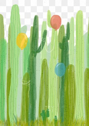 Drawing Plant - Cactaceae Watercolor Painting Drawing PNG