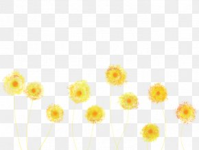 Dandelion - Dandelion Yellow Flower Blue Orange PNG