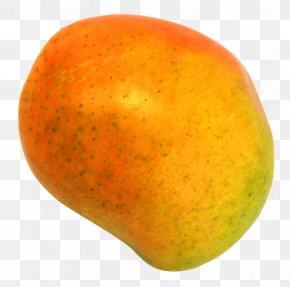 Mango - Grapefruit Orange Apple PNG