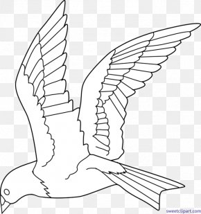Bird - Bird Colouring Pages Coloring Book Flight Drawing PNG