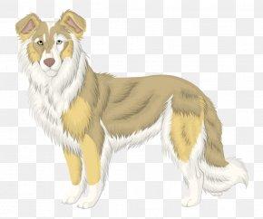 Sheep Dog - Rough Collie Dog Breed Companion Dog PNG