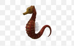 3d Underwater World - Seahorse Three-dimensional Space Clip Art PNG