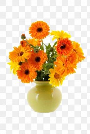 Marigolds And Vases - Vase Flower Calendula Officinalis PNG