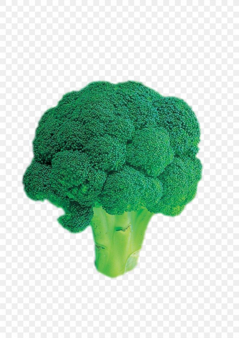 Broccoli Vegetable, PNG, 1240x1754px, Broccoli, Cauliflower, Flowerpot, Food, Grass Download Free