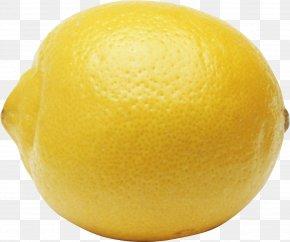 Lemon - Lemon Fruit Key Lime Clip Art PNG