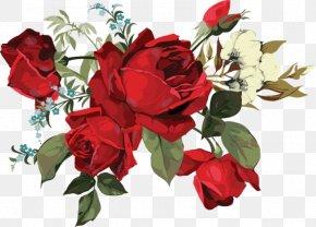 Flower - Garden Roses Drawing Flower Clip Art PNG