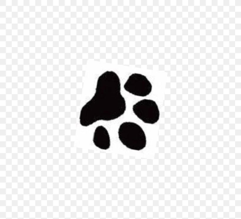 Yorkshire Terrier Cat Cougar Paw Clip Art, PNG, 744x744px, Yorkshire Terrier, Black, Cat, Cougar, Dog Download Free