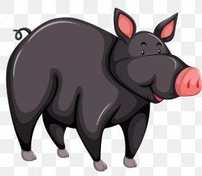 Cartoon Wild Boar - Large Black Pig Black Iberian Pig Cartoon PNG