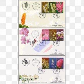 Flower - Paper Picture Frames Flower Rectangle Font PNG