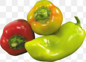 Pepper Image - Bell Pepper Chili Pepper Food Spice PNG