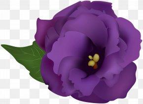 Purple Flower Transparent Clip Art Image - Clip Art PNG