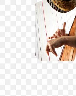 Conservatoire National Supérieur De Musique Et De Danse De Lyon Anne Ricquebourg Shoulder PNG