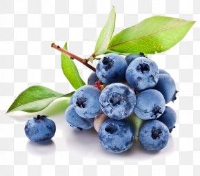 Blueberry Fruit - Juice Fruit Blueberry PNG