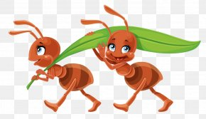 Smith Ant Orman - Ant Vector Graphics Royalty-free Stock Photography Image PNG