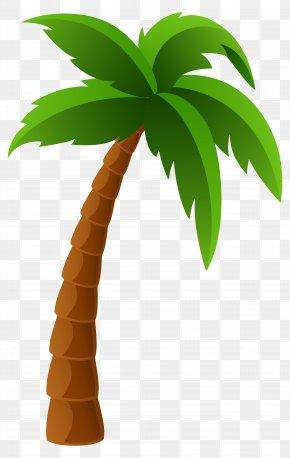 Palm Tree Image Clipart - Washingtonia Filifera Arecaceae Washingtonia Robusta Clip Art PNG