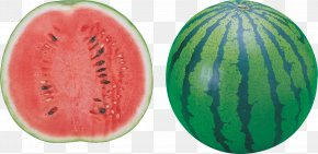 Watermelon Image - Watermelon Seed Oil PNG