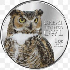 Great Horned Owl - Great Horned Owl Bird Of Prey Beak PNG