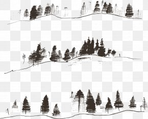 Vector Lines Mountain Woods - Fir Engraving Drawing Contour PNG