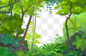 Cartoon Forest - Jungle Euclidean Vector Tropical Rainforest PNG