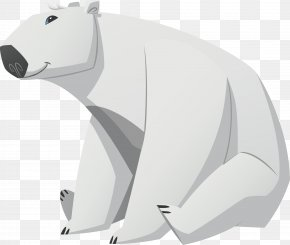 Polar White Bear - Polar Bear Animal Arctic Fox PNG