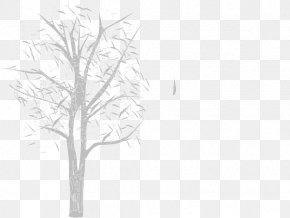 Leaf - Twig White Plant Stem Line Art Leaf PNG