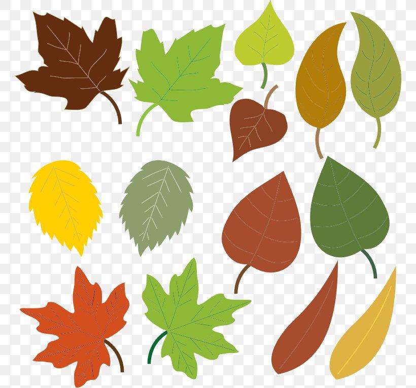Autumn Leaf Color Clip Art, PNG, 764x765px, Leaf, Autumn, Autumn Leaf Color, Blog, Branch Download Free