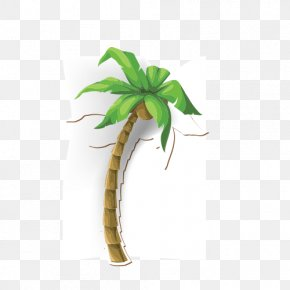 Coconut Tree - Coconut Tree Arecaceae Illustration PNG