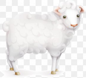 Cartoon Sheep - Sheep PNG