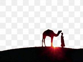 Sunset Under The Camel - Ramadan Eid Al-Fitr Eid Mubarak Muslim Jumuatul-Wida PNG