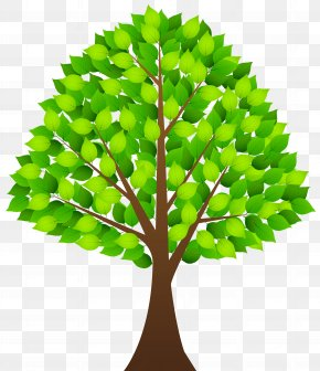 Tree With Green Leaves Transparent Clip Art Image - Clip Art PNG