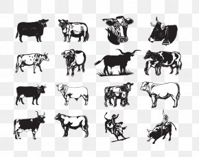 Dairy Cow - Texas Longhorn Beef Cattle Bull Clip Art PNG