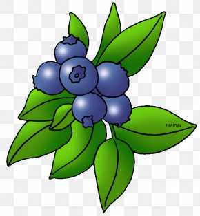 Berry Cliparts - Blueberry Blackberry Fruit Clip Art PNG