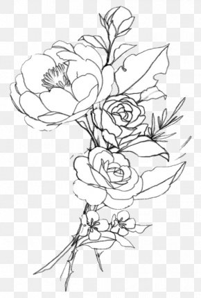 Flowervector Cartoon - Drawing Line Art Illustration Image Photography PNG