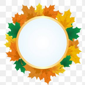 Maple Circle Box Illustration - Maple Leaf Royalty-free Illustration PNG