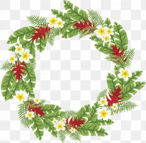 Palm Tree Leaves Wreath - Arecaceae Leaf Tree Computer File PNG