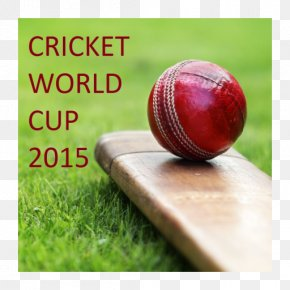 Cricket World Cup - 2015 Cricket World Cup India National Cricket Team ICC Champions Trophy Sport PNG