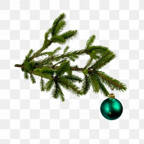 Christmas Tree Decoration - Christmas Tree Christmas Ornament Clip Art PNG