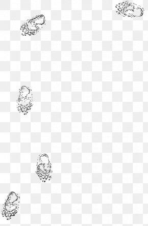 Bear Black And White - Footprint Clip Art PNG