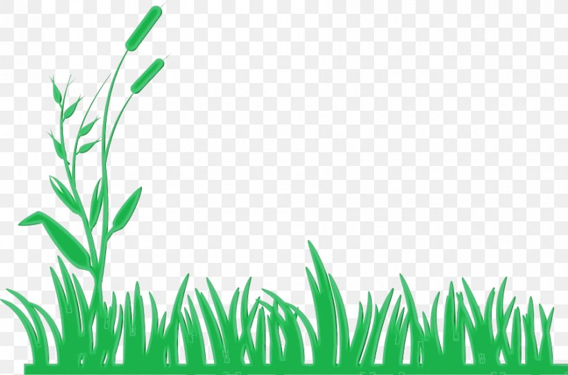 Green Leaf Watercolor, PNG, 900x595px, Watercolor, Borders And Frames, Document, Grass, Grass Family Download Free