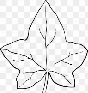 Black Leaves Cliparts - Autumn Leaf Color Common Ivy Clip Art PNG