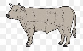 Flat Iron Steak - Dairy Cattle Angus Cattle Beef Cattle Calf Ox PNG