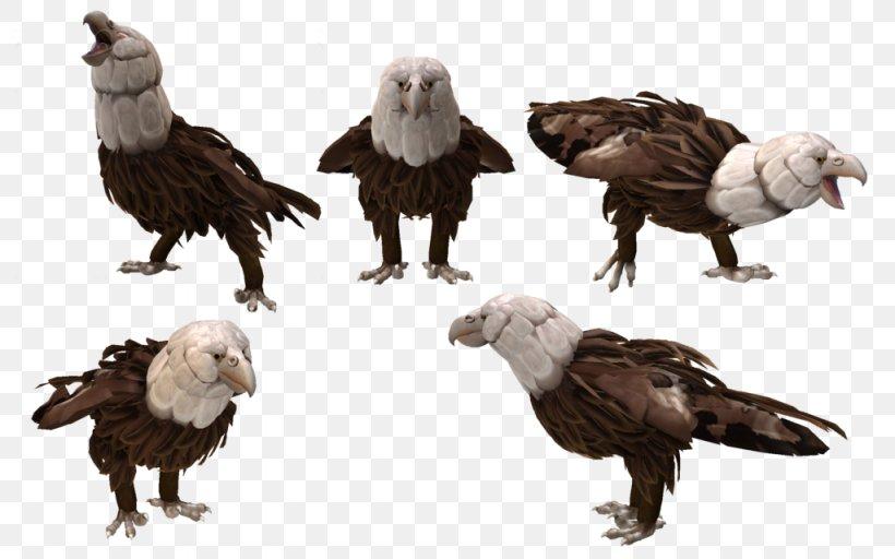 Spore Creature Creator Spore Creatures Bald Eagle Bird, PNG, 1024x640px, Spore, Accipitriformes, Animal, Bald Eagle, Beak Download Free