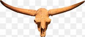 Tau Flag - Bison Latifrons Bison Antiquus Antelope Cattle American Bison PNG