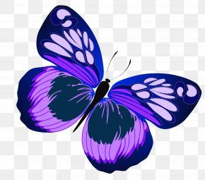 Blue And Purple Butterfly Clipart - Butterfly Purple Clip Art PNG