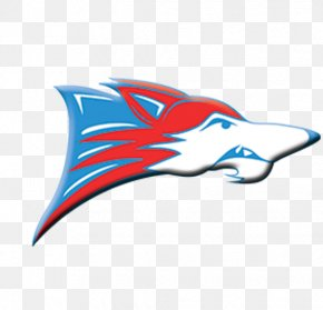 North Carolina High School Athletic Association - Oakland Raiders North Iredell High School South Iredell High School Sport Iredell-Statesville Schools PNG