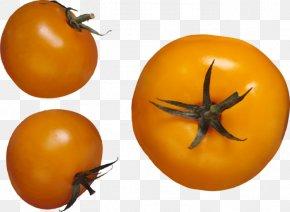 Tomato - Pear Tomato Image File Formats Clip Art PNG